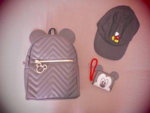 bag hat purse