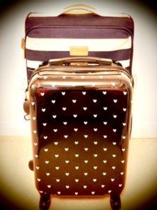 my luggage