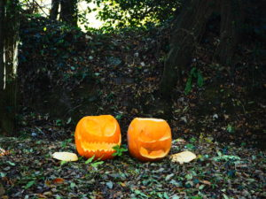 woods pumpkins